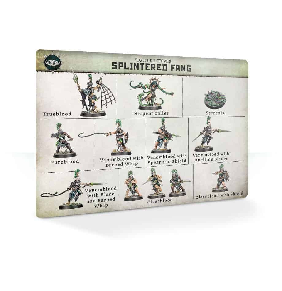 Overview of the fighters in the Splintered Fang Warband